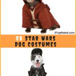 Star Wars Dog Costumes