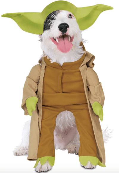 Buy Yoda costume